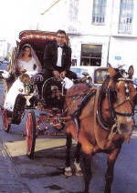 Horse and Carriage for hire - your wedding in Cyprus in Style